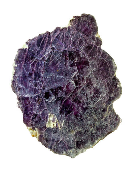 Deposits Wall Art - Photograph - Lepidolite Lilac Rock Crystal by Natural History Museum, London/science Photo Library