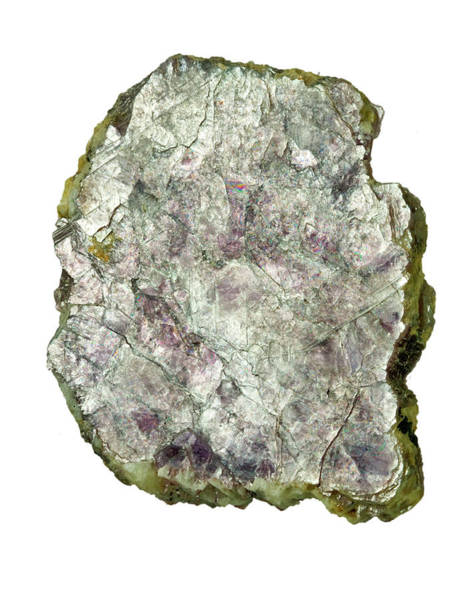 Deposits Wall Art - Photograph - Lepidolite Mica Rock by Natural History Museum, London/science Photo Library