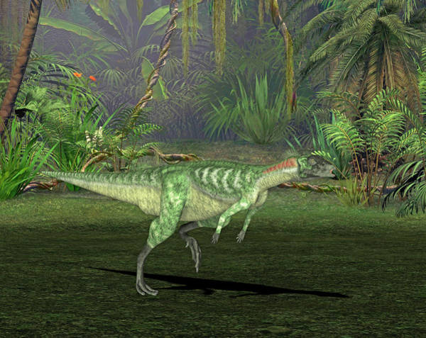 Palaeozoology Wall Art - Photograph - Lesothosaurus Dinosaur by Friedrich Saurer