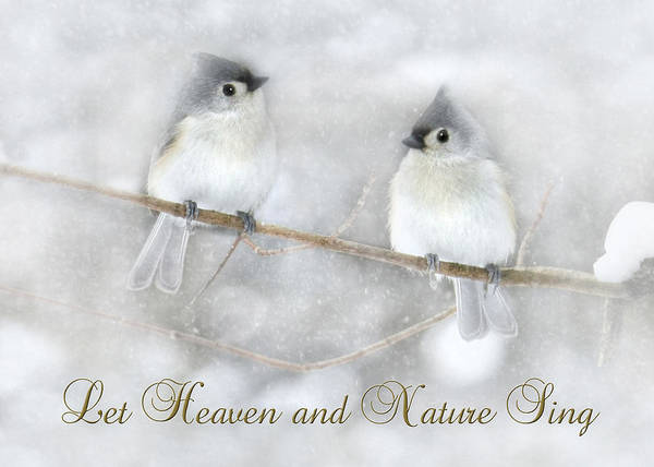 Wall Art - Photograph - Let Heaven And Nature Sing by Lori Deiter