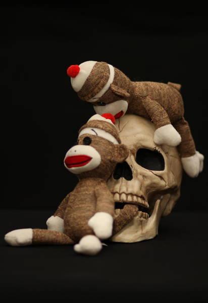 Sock Monkey Photograph - Let Him Go by Chuck Johnson