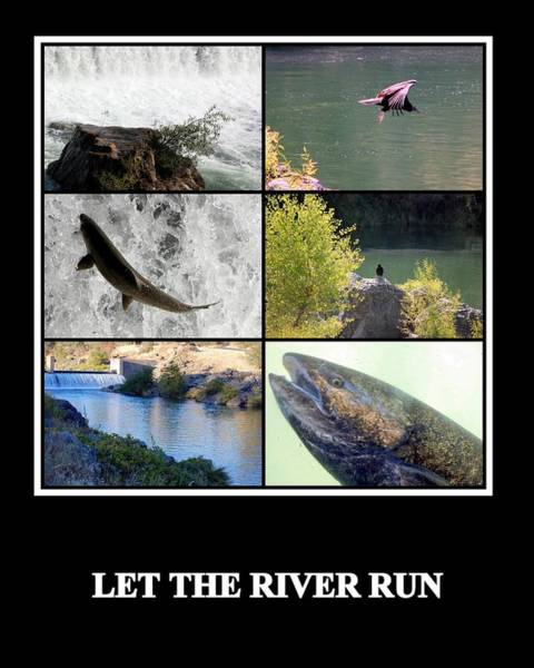 Photograph - Let The River Run by AJ  Schibig