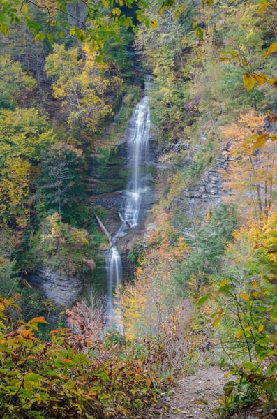 Photograph - Letchworth State Park  7d07730 by Guy Whiteley