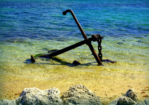 Dock Of The Bay Photograph - Letting Go by Karen Wiles