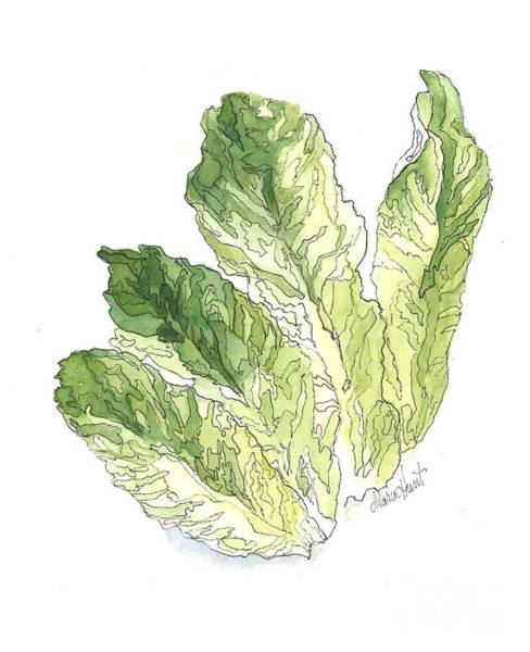 Wall Art - Painting - Lettuce Rejoice by Maria Hunt