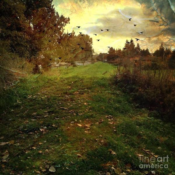 Photograph - Sauvie Island Autumn by Charlene Mitchell