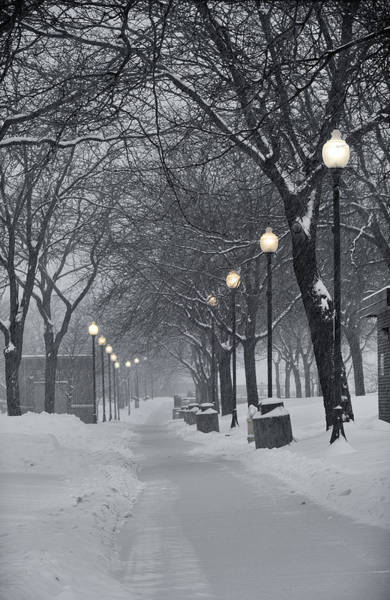 Photograph - Levee Park Lights by Al  Mueller