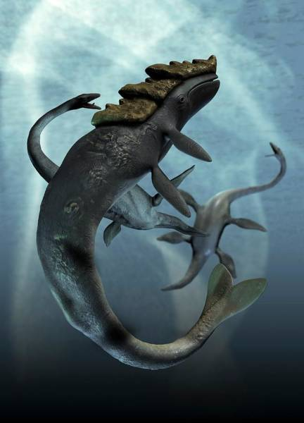 Prehistory Photograph - Leviathan And Plesiosaur by Victor Habbick Visions/science Photo Library