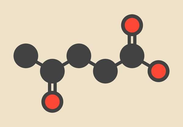 Levulinic Acid Molecule Art Print