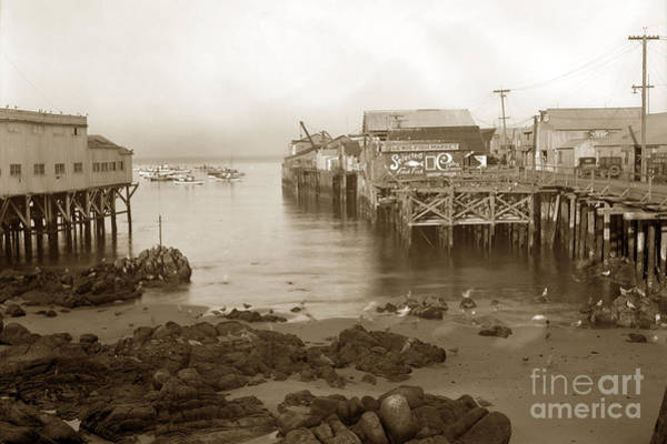 Photograph - Lewis Fish Market Selected Fresh Fish And Swains Fish Market Monterey 1929 by California Views Archives Mr Pat Hathaway Archives