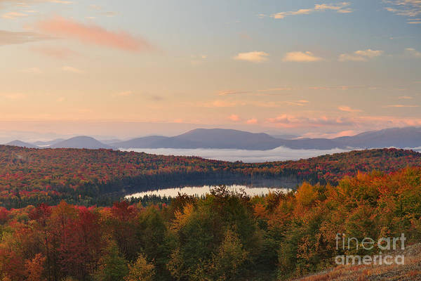 Photograph - Lewis Pond -- Front And Center by Charles Kozierok
