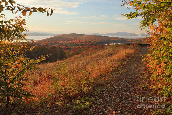 Photograph - Lewis Pond Overlook Pullback by Charles Kozierok