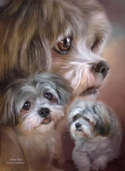 Mixed Media - Lhasa Apso by Carol Cavalaris