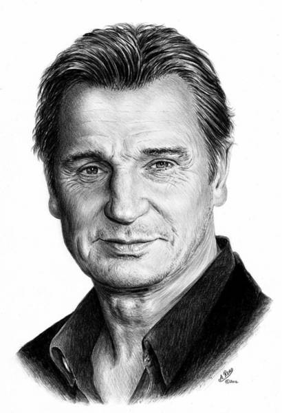 Wall Art - Drawing - Liam Neeson by Andrew Read
