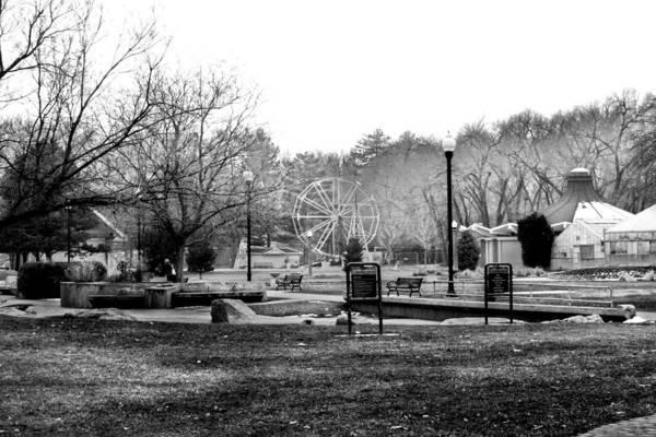 Photograph - Liberty Park by Tarey Potter