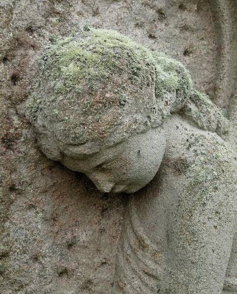Pollution Photograph - Lichen Growing On Gravestone by Cordelia Molloy
