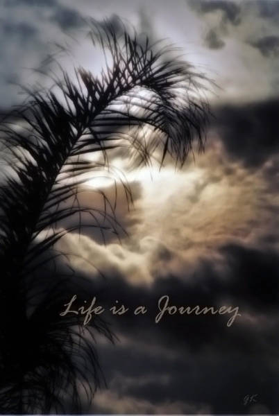 Photograph - Life Is A Journey by Gerlinde Keating - Galleria GK Keating Associates Inc