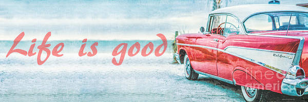 Wall Art - Photograph - Life Is Good by Edward Fielding