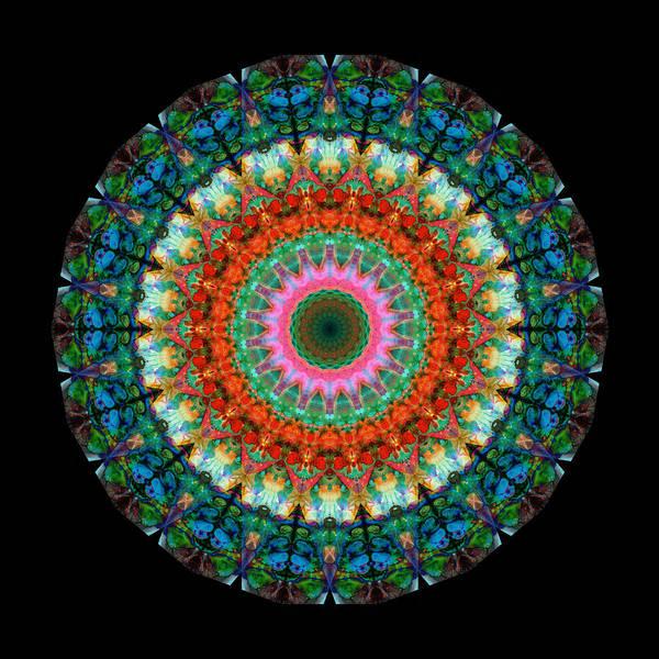 Kaleidoscope Wall Art - Painting - Life Joy - Mandala Art By Sharon Cummings by Sharon Cummings