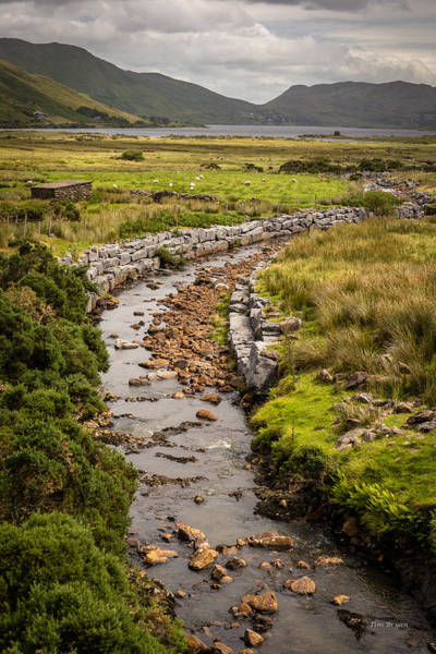 Wall Art - Photograph - Life To The Glen by Tim Bryan