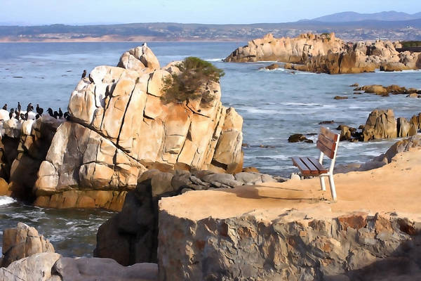 Monterey Bay Photograph - Life's A Bench by Art Block Collections