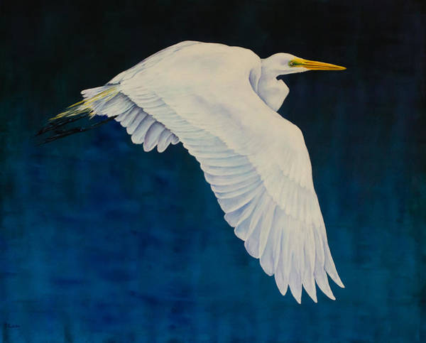 Painting - Evening Flight by Nancy Lauby