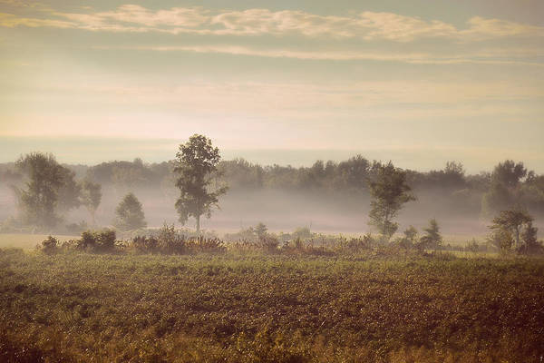 Photograph - Lifting Fog - Country Scene by Jai Johnson