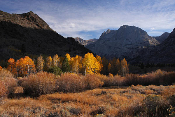 Photograph - Light And Dark In An Autumnal Sierra Landscape by Steve Wolfe
