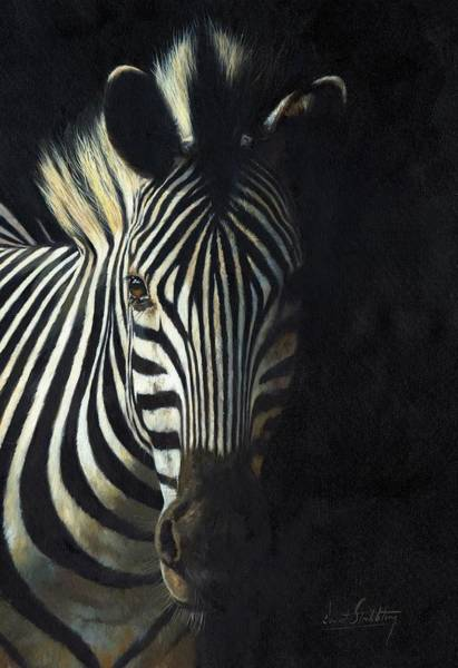 Zebra Painting - Light And Shade by David Stribbling
