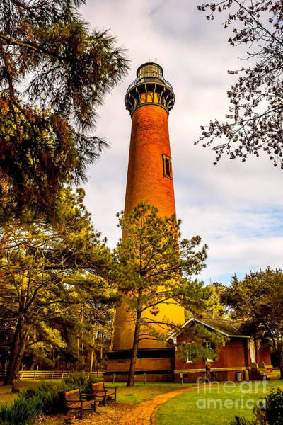 Photograph - Light At Currituck by Nick Zelinsky