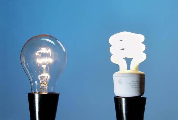 Energy-saving Wall Art - Photograph - Light Bulbs by Cordelia Molloy/science Photo Library