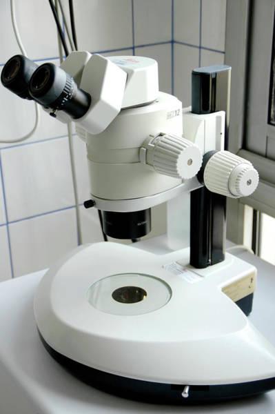 Microscope Wall Art - Photograph - Light Microscope by Aj Photo/science Photo Library