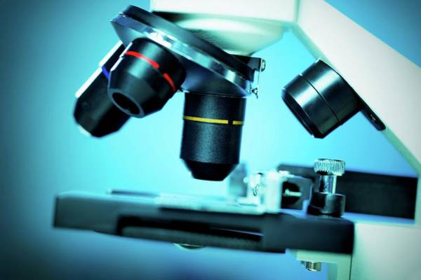 Wall Art - Photograph - Light Microscope by Wladimir Bulgar/science Photo Library