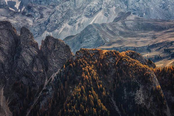 Vista Photograph - Light Of Autumn by Uschi Hermann