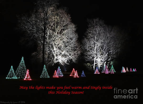 Photograph - Light Of The Holidays by Gena Weiser