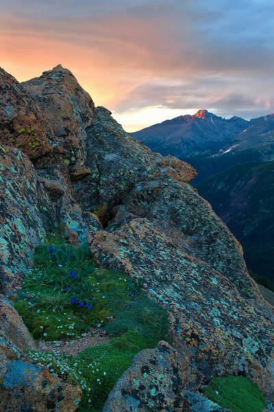 Wall Art - Photograph - Light On Long's Peak by Ronda Kimbrow