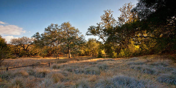 Santa Rosa Photograph - Light On The Pasture by Peter Tellone
