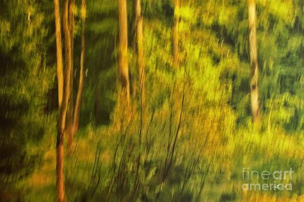 Photograph - Light Painting by Jutta Maria Pusl