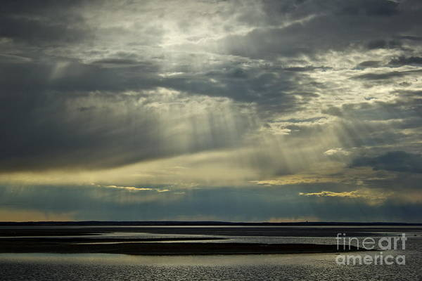 Photograph - Light Shine by Amazing Jules