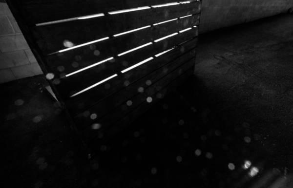 Photograph - Light Study by Fran Riley