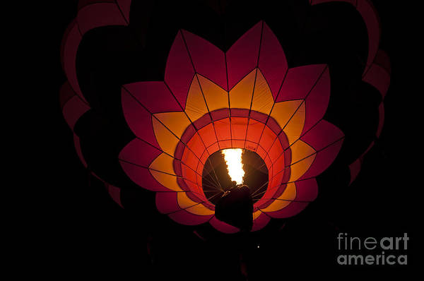 Photograph - Light The Dawn by Lula Adams