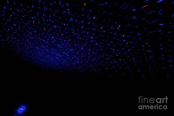 Photograph - Light Work - 7 by Jacqueline Athmann