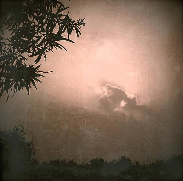Photograph - Light by HweeYen Ong