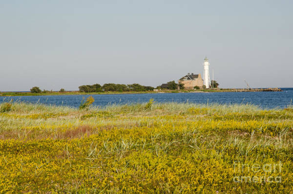 Rights Managed Images Wall Art - Photograph - Lighthouse At Yellow Coast by Kennerth and Birgitta Kullman