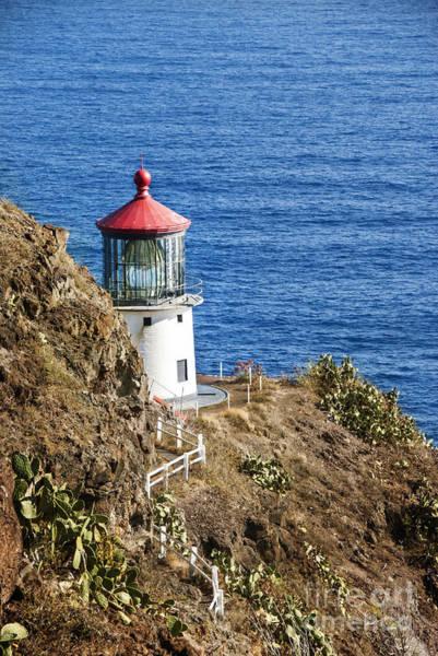 Wall Art - Photograph - Lighthouse by Juli Scalzi