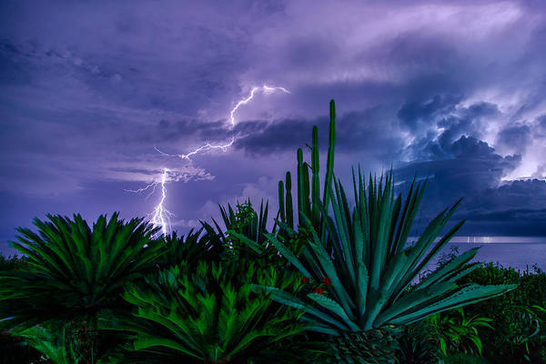 Puerto Plata Photograph - Lightning During Storm by Dmitry Sergeev