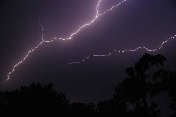 Photograph - Lightning by Larah McElroy