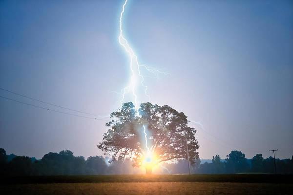 Photograph - Lightning Strikes Oak Tree   by Lars Lentz