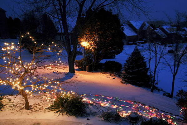 Photograph - Lights In Snow by Carol Erikson
