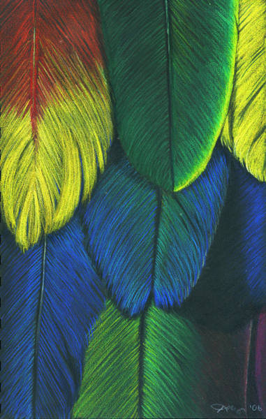 Green Parrot Drawing - Like A Feather by Kristee Mays